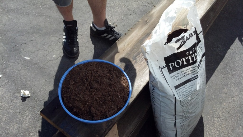 Now for the dirt!  I got some potting soil and some extra peat moss to hold in moisture better for the ivy, especially since this stuff is on the super sunny side right now.