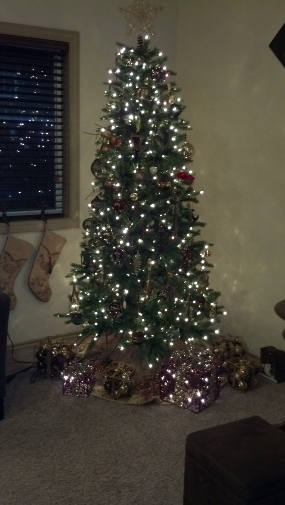 And a nice Sunday dinner with my family, Jeff makes the best (no joke) lasagna and they have the purtiest tree!