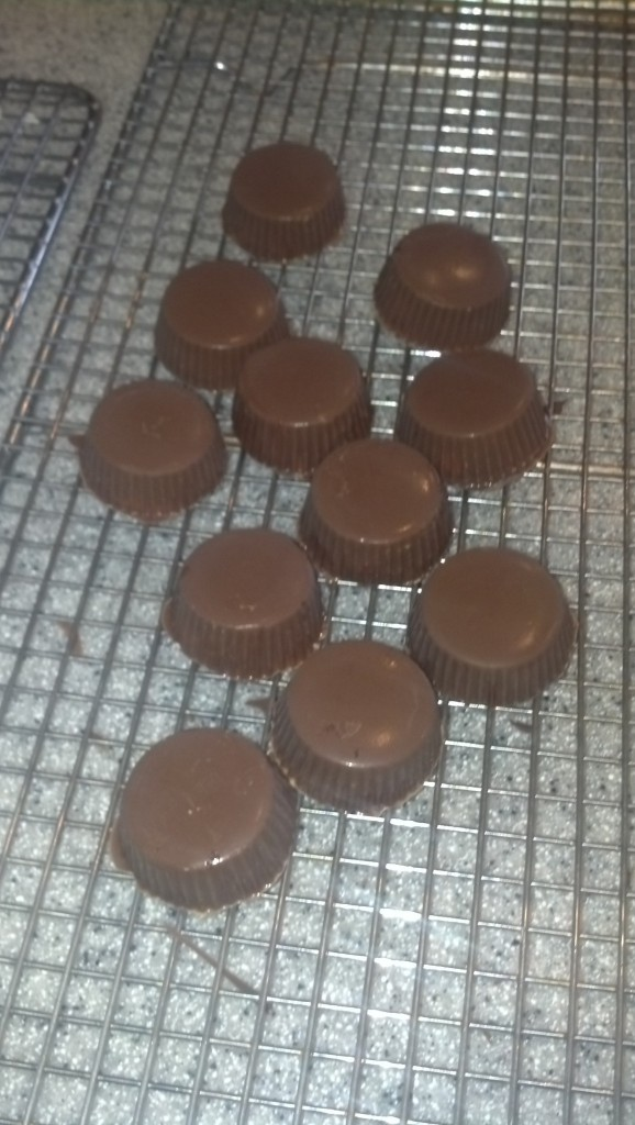 I was also able to make some Christmas Chocolate for some people (not all of the ones I wanted to make it for, turns out standing on tile for a while hurts my back...