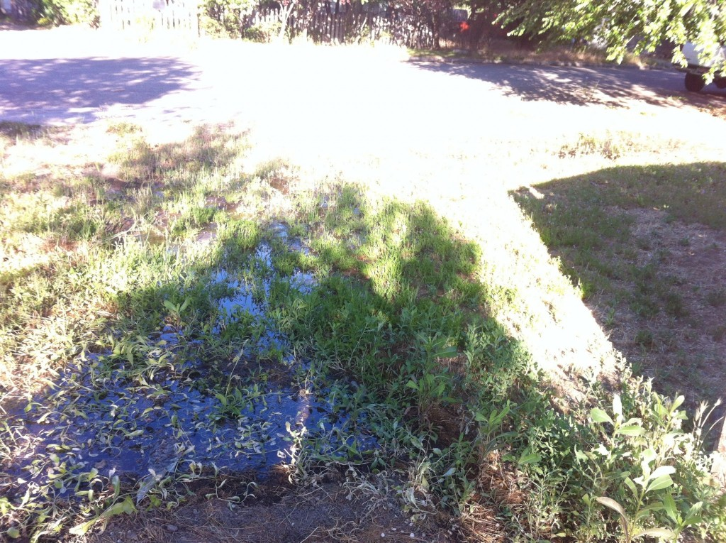 This was some morning complications that may have added to the squishy ground, there was an irrigation flooding issues the morning of the move