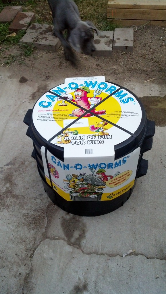 So the City has lent me this Can-O-Worms which is ideal for growing and housing my worms, I will break it apart very soon and show you all how it works!