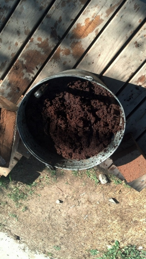 Upsidedown shot!  I suppose I could turn it but it looks about the same, its a bucket of dirt basically :)