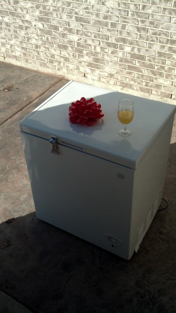 They go to my cute new deep freezer which will be finding it's way full of delicious home cooked freezeer meals for me in preparation for MiniMiller's arrival!  Isn't it cute!  Nathan put the lock on himself (since it now sits out back on my patio)