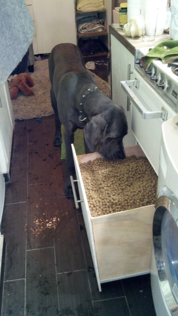 Also, I put the dog food drawer to the ultimate test, there is 100# of dog food in there and it is perfect!  Denver loves eating his brown pebbles from the source :)