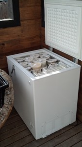 And the end result is a very full freezer that sits on the patio of my tiny house, just in reach for convenience!