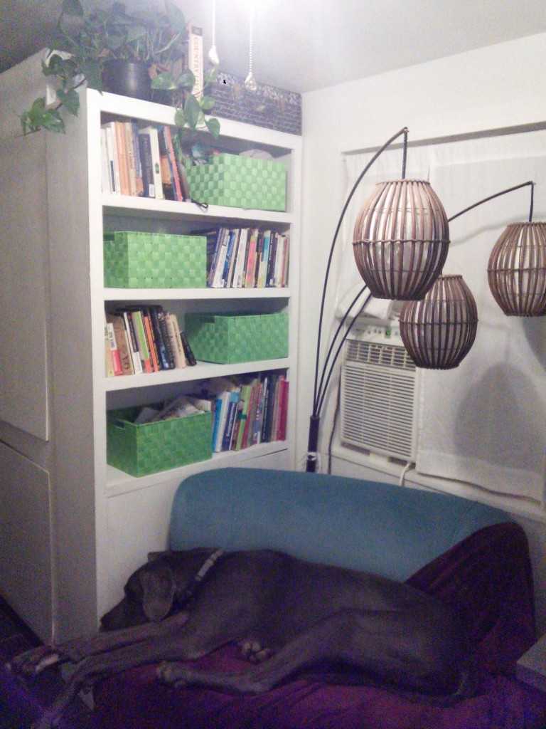 and after, I added a shelf and some toy boxes for Hazel