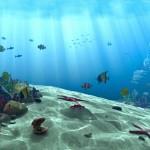 underwater_scene_by_akchilug-d4wgma4