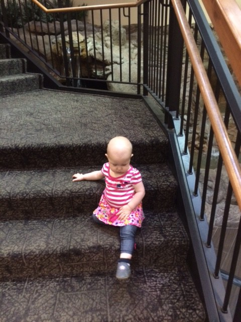 This is where we spent most of the weekend, she learned to go down stairs like a grown up, or so she thinks, now she just flings herself toward any stairs, toddlers are a hazard to themselves!