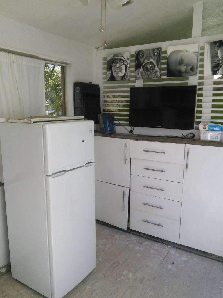 fridge in the living room!