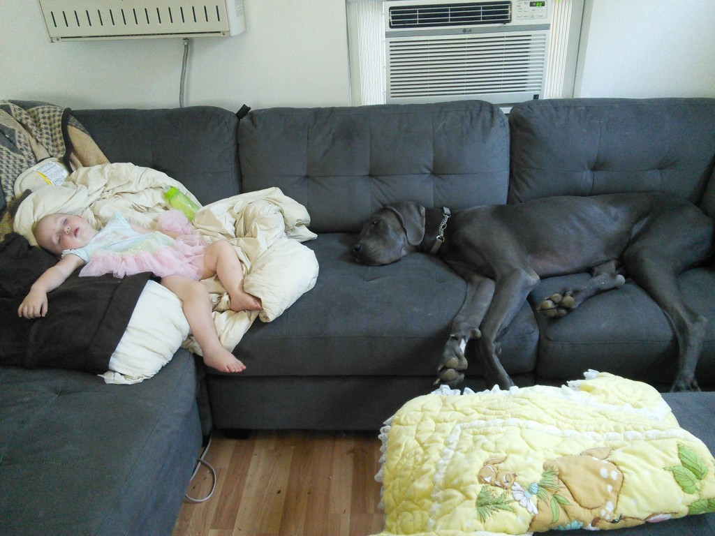 Nap buddies