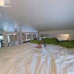Hazel taking a nap in my bed :)