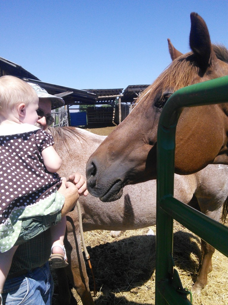 Then she got horse wiskers right in the tummy and laughed!
