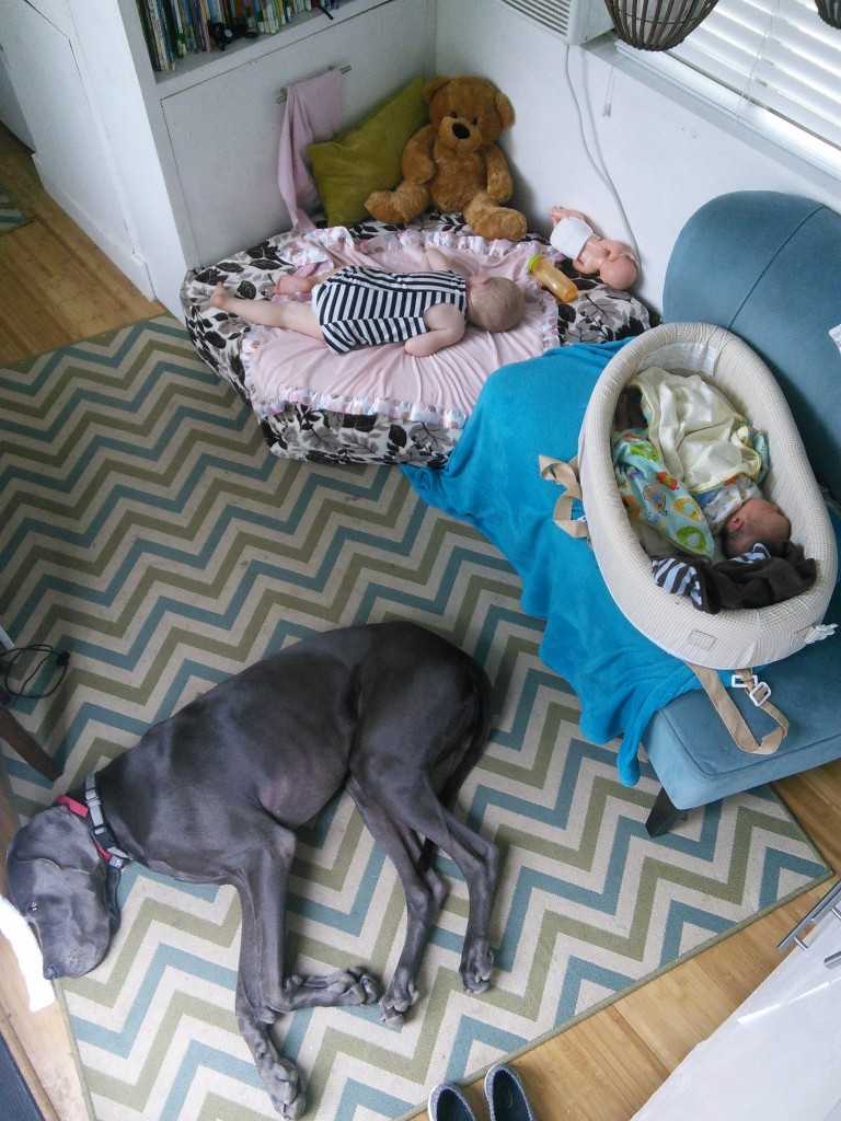 All of the babies sleeping... dont mind that one is on the dog bed and the other is on the couch, and the dog is mad he cant use either... tyoudont wake sleeping babies! ;)