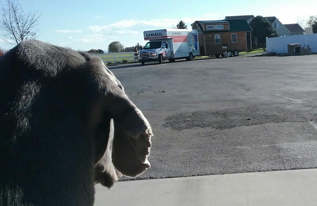 Denver was sad to say goodbye!