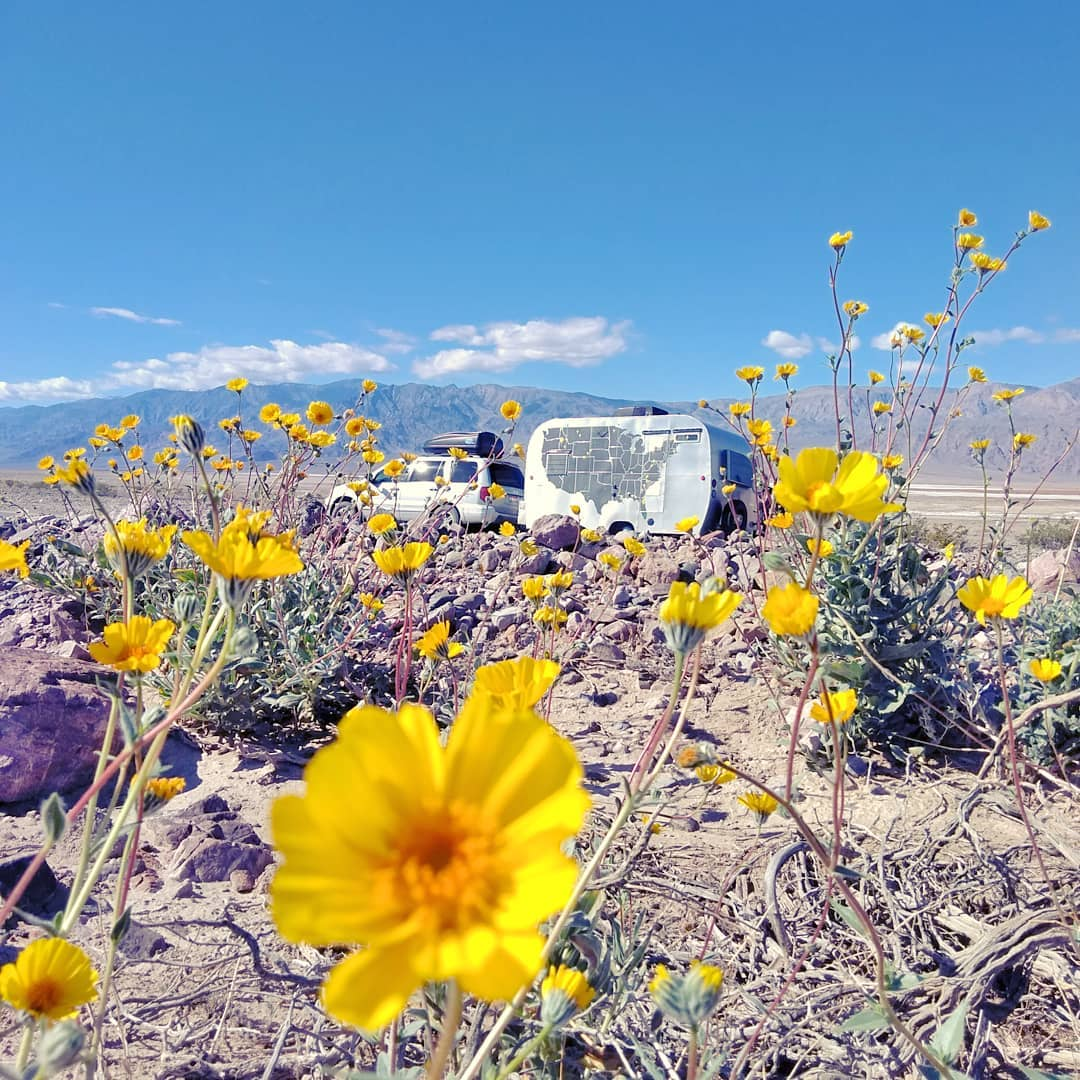 Spring in Death Valley NP